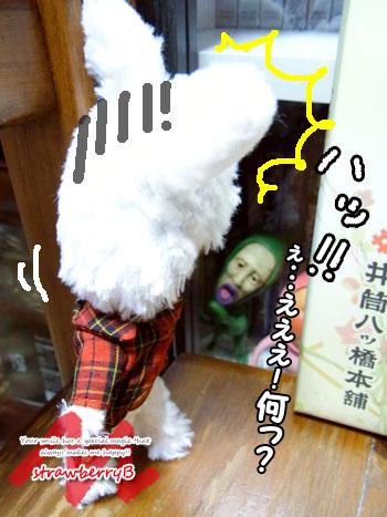 20110110_003.jpg