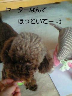 2010_0308_142500-NEC_0309.jpg