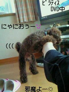 2010_0613_162700-NEC_0796.jpg