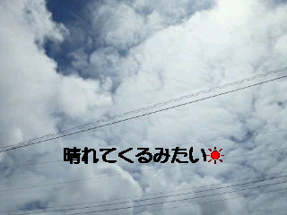 2010_0811_112200-NEC_0052.jpg
