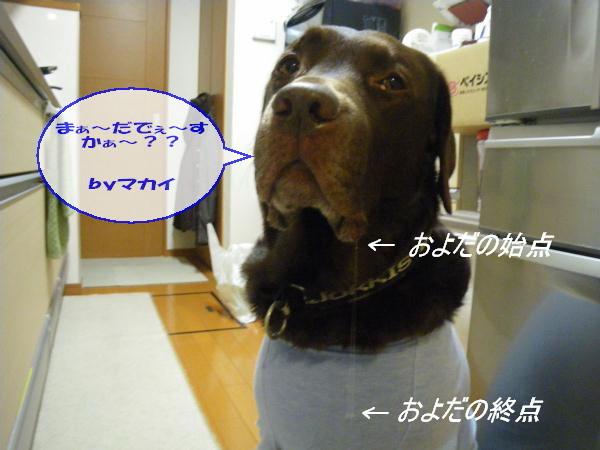 101212_006.jpg