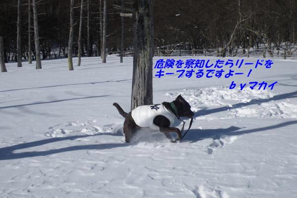 110108_029.jpg