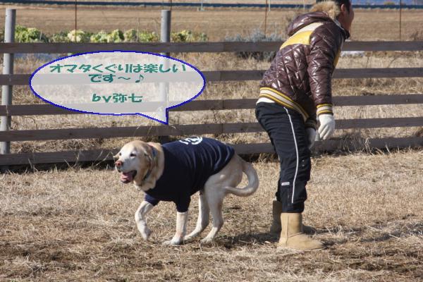 20110109_010.jpg