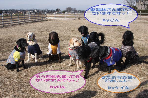 20110109_047.jpg
