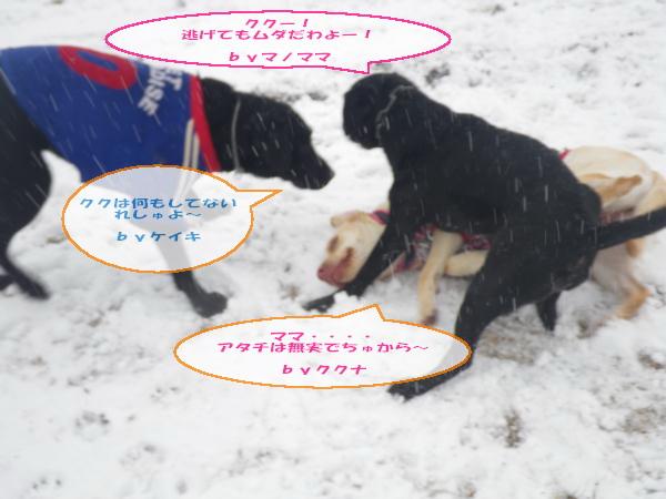 20110211_028.jpg