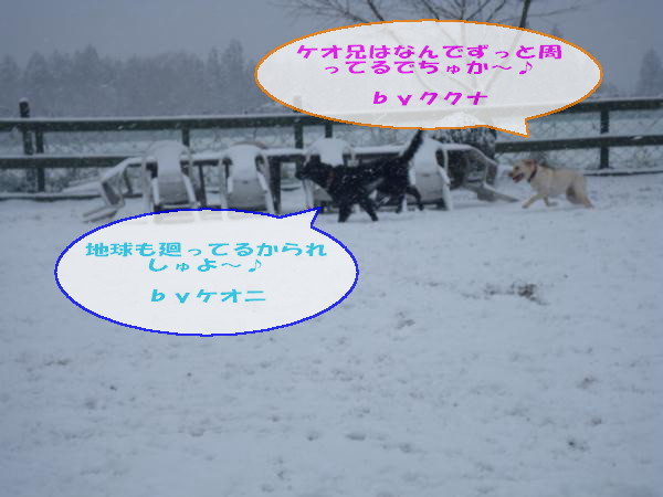 20110211_057.jpg