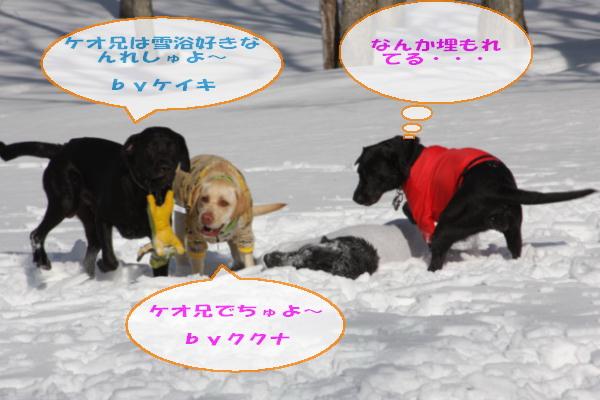 2011_02_06_0251.jpg