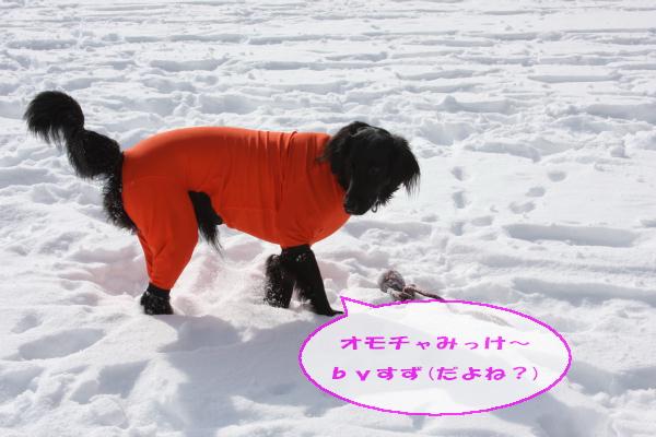 2011_02_06_0305.jpg