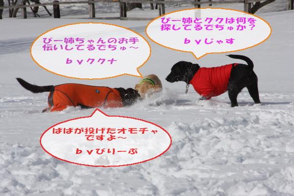 2011_02_06_0311.jpg