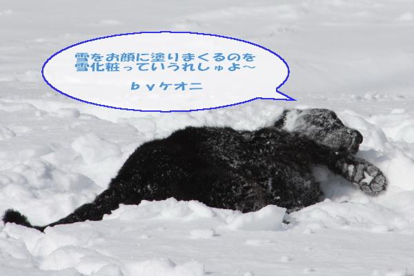 2011_02_06_0316.jpg
