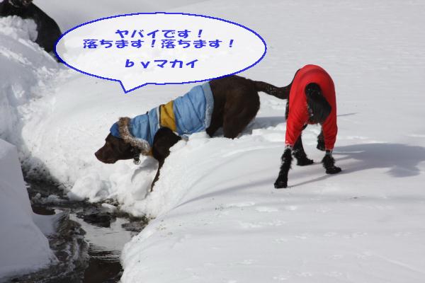 2011_02_06_0322.jpg