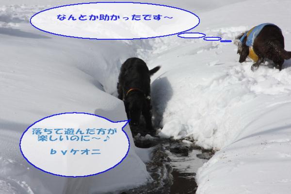 2011_02_06_0324.jpg