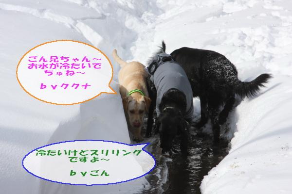2011_02_06_0325.jpg