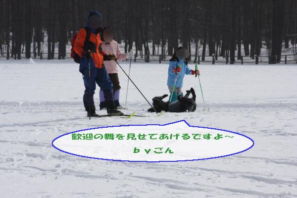 2011_02_06_0337.jpg