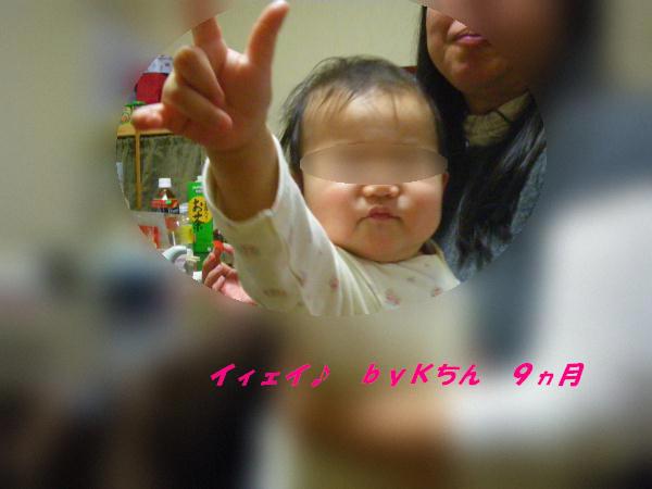 IMGP1537.jpg
