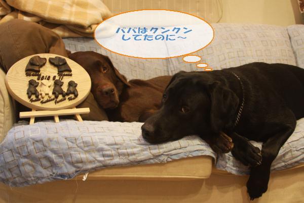 keikibd2011_004.jpg