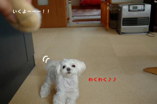 201004D21-200.jpg