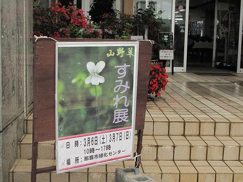 すみれ展会場10.3.6
