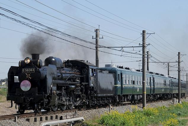 C58-363さくら