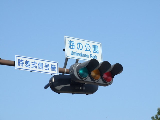 DSCF8115-640.jpg