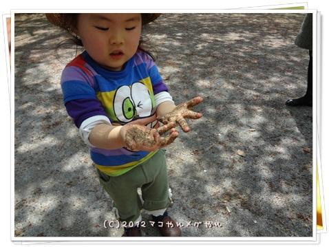 CHINOKO3NEN13.jpg
