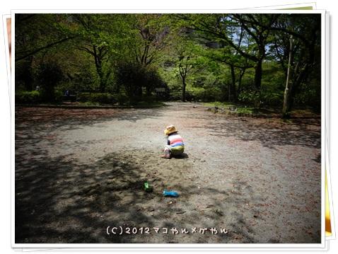 CHINOKO3NEN14.jpg