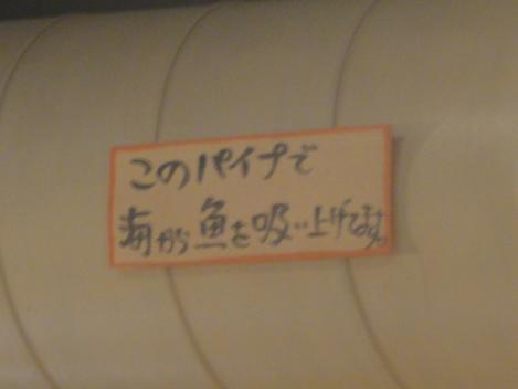 DSC00099_20111007231259.jpg