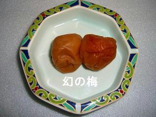2009_11270008.jpg
