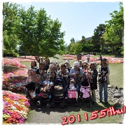 39_20110519223020.jpg