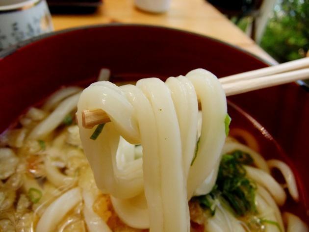 田中 かけ麺