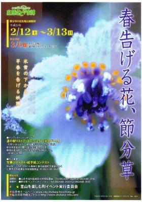 20110104_00000.jpg