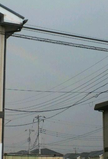 20130727虹です.jpg