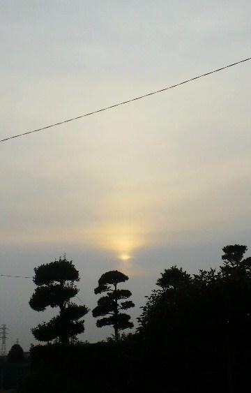 梨色の太陽0808.jpg