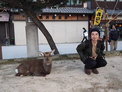 hatsukaichi20.jpg