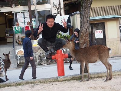 hatsukaichi22.jpg