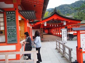 hatsukaichi40.jpg