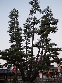 hatsukaichi59.jpg