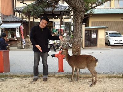 hatsukaichi93.jpg
