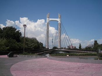 koto-kiba-park23.jpg