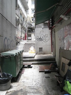 kowloon100.jpg