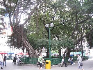 kowloon198.jpg