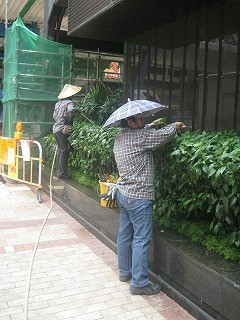 kowloon79.jpg