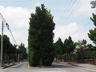 kumejima212.jpg