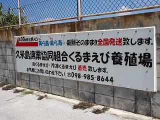 kumejima213.jpg