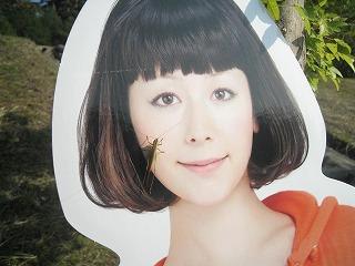 mitsuke30.jpg