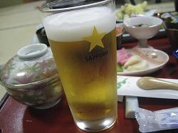 shibata11.jpg