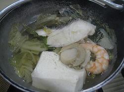 shibata19.jpg