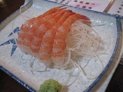 shibata41.jpg