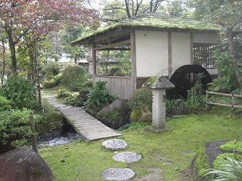 shibata52.jpg