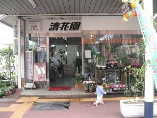 uonuma-street133.jpg
